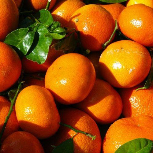 Mandarina - Clementina